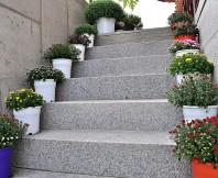 계단,화분